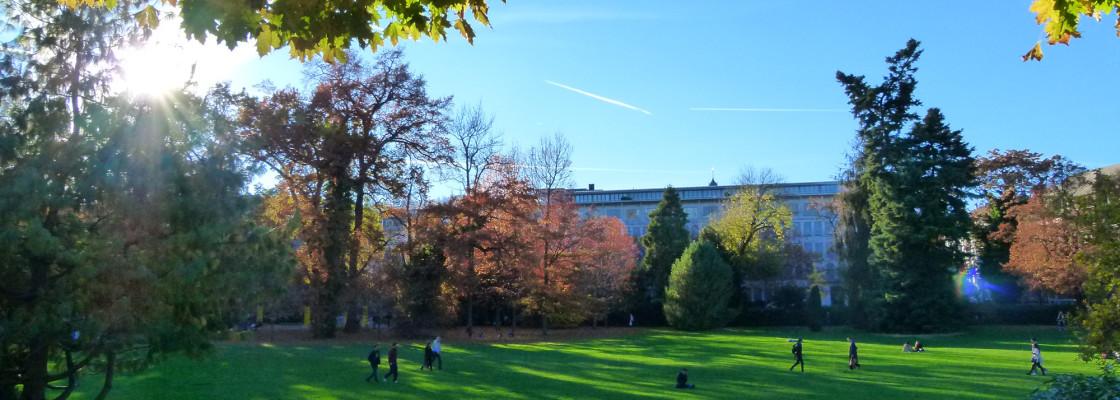 Rentenwiese / Arboretum