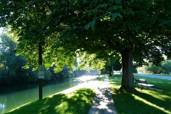 Flussbad Au-Höngg | Werdinsel