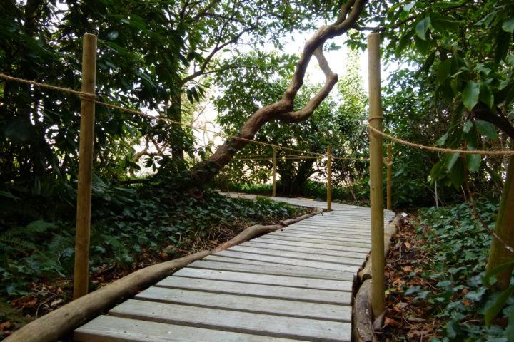 Alter Botanischer Garten