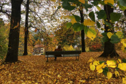 Rieterpark